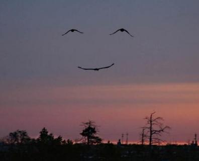 http://cahayamatadanhati.files.wordpress.com/2009/05/smile1.jpg